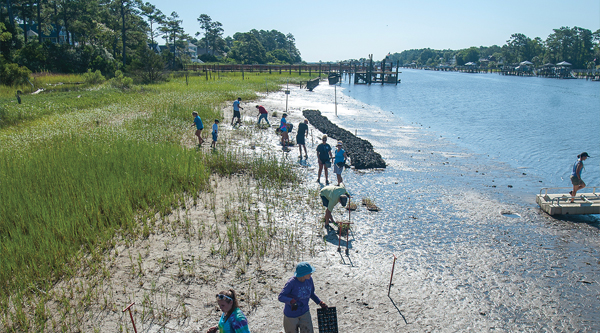 UCNW students conducting research and working on the NC coast