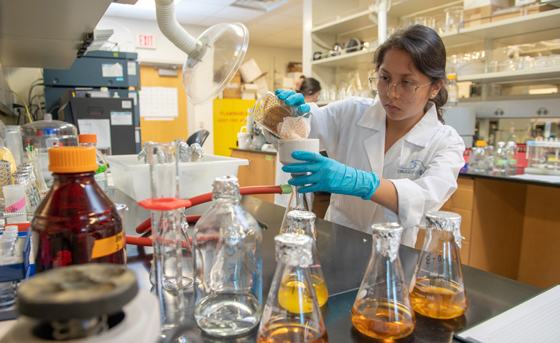 student conducting research in Drug Discovery Lab in the Center for Marine Science