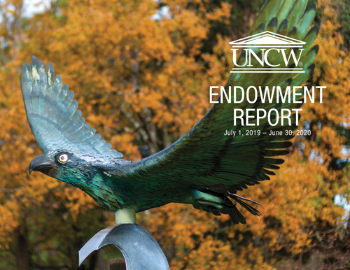 Endowment Report 2016-2017
