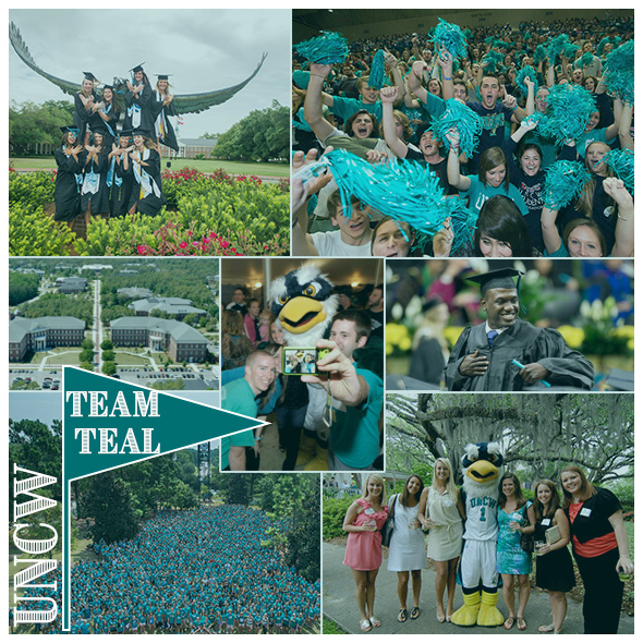 Give More in 24 Team Teal